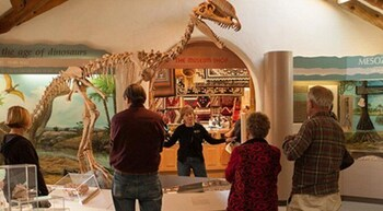 Skip the Line: Museum of Northern Arizona Admission Ticket
