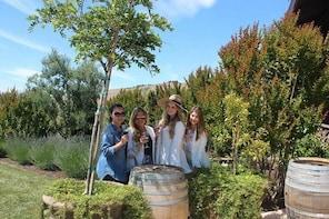Napa Valley Wineries Tour