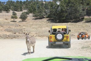 Safari Aitana Jeep Tour