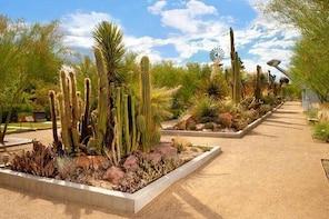 Springs Preserve in Las Vegas Admission Ticket