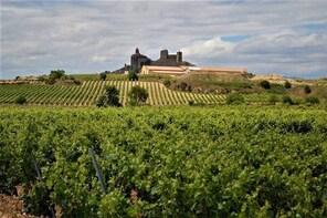 Private wine tour - Terroir wines