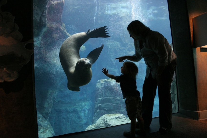 Show item 5 of 4. Mother and child at the Aquarium of the Pacific in Long Beach, California