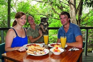 Breakfast with the Koalas at Hartley's Crocodile Park from Cairns or Palm C...