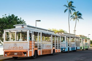 LeaLea Trolley PASS (14-DAY) - Unlimited Rides on 10 (7 Regular+3Express) L...