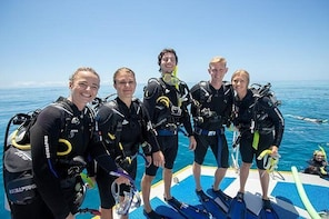 Learn to Scuba Dive on the Great Barrier Reef: 4-Day PADI Open Water Dive C...
