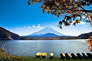 1 Day Private Hakone Tour (Charter) - English Speaking Driver