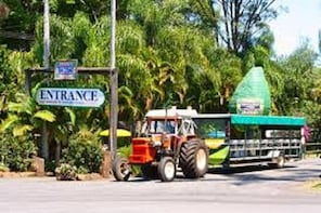 Tropical Fruit World with Wildlife Boat Cruise, Mini Train Ride from Gold C...
