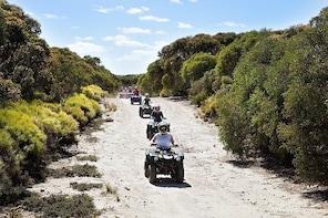 Quad Bike (quad bike) Tours