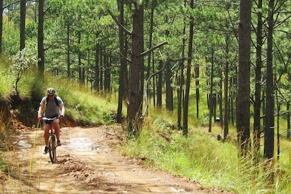 DALAT HIKING AND BIKING COMBINED GROUP TOUR
