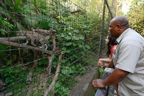 Skip the Line: The Belize Zoo Admission Ticket