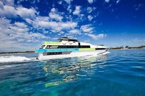 Rottnest Island Return Fast Ferry from Hillarys Boat Harbour