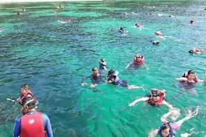 Langkawi Island Snorkeling Trip