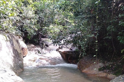 The secret waterfall of Penang