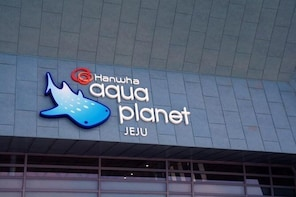 Aquaplanet Jeju Transfer, One way, Round trip