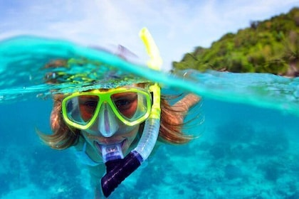 Pattaya - Full Day Snorkeling