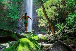 Wailua River Kayak and Hike Adventure