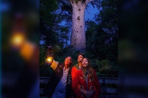 Waipoua Forest: Twilight Encounter - Maori Cultural Eco Night Tour