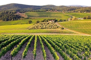 Day Trip to Ancient Wine Cities: Montalcino, San Gimignano and Chianti
