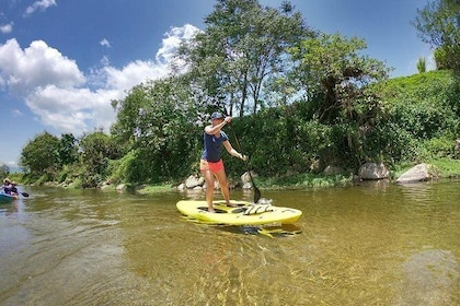 Babinda Half Day or Full Day Stand-up Paddle Board Self-Guided Tour