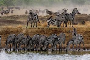 5 Day Tarangire - Serengeti - Ngorongoro - Lake Manyara - Group Joining Tou...