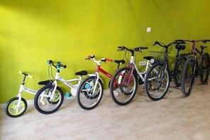 Alquiler de bicicletas (Rent a bike)
