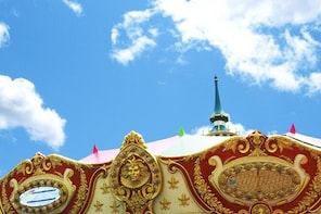 Tokyo DisneyLand Pivate Transfer : from DisneyLand to Tokyo (One Way)