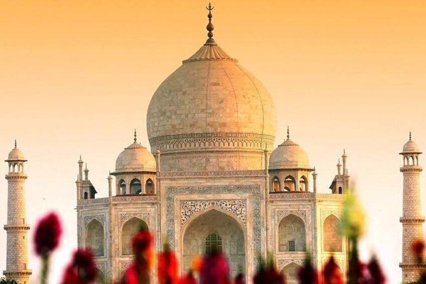 Show item 3 of 6. Taj Mahal - Agra