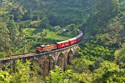 Train Tickets from Nanu Oya to Ella