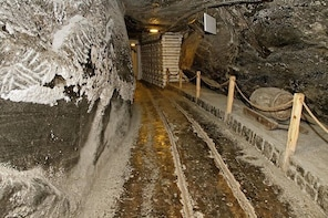 Auschwitz and Wieliczka Salt Mine One Day Private Tour with 4Travellers