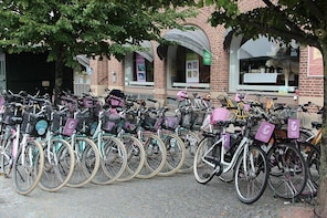 Malmo City Bike Hire