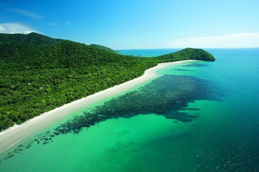 Where the Rainforest meets the reef