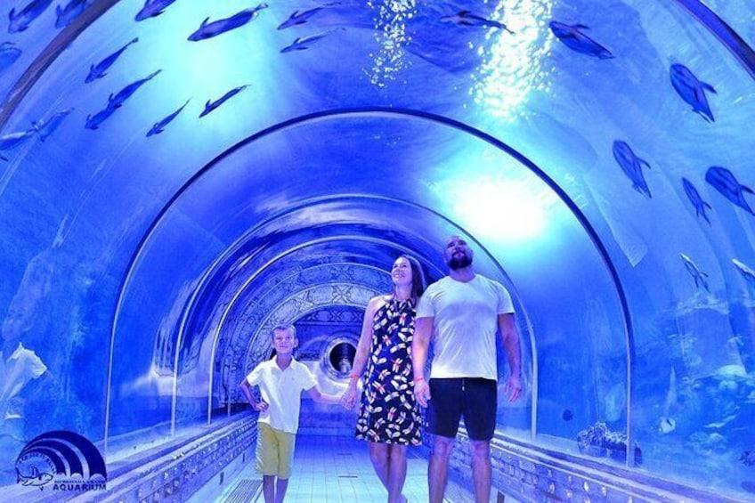 Show item 1 of 16. Skip the Line: Hurghada Grand Aquarium Entrance Ticket
