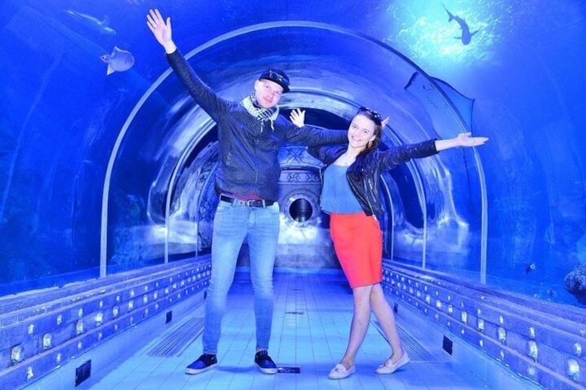 Show item 4 of 16. Skip the Line: Hurghada Grand Aquarium Entrance Ticket