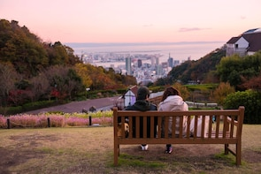 Private & Personalized: Half Day in Kobe with a Local
