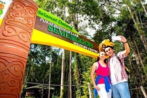 Semenggoh Wildlife Rehabilitation Centre - Small Group Tour