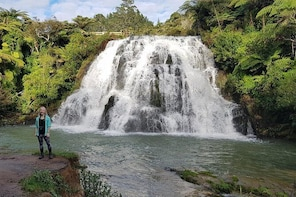 Mount Maunganui and Karangahake Gorge Day Trip