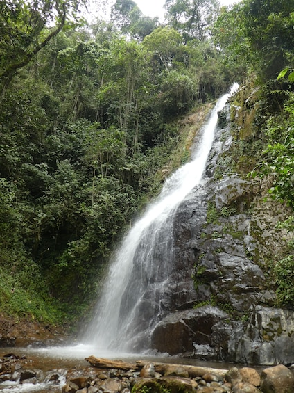 Show item 4 of 10. Exclusive Nature Adventure, Colombia, Cali