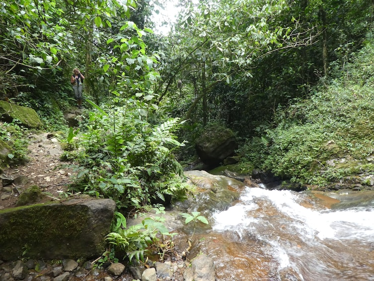 Show item 3 of 10. Exclusive Nature Adventure, Colombia, Cali