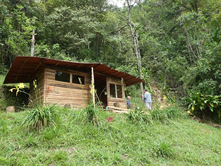 Show item 5 of 10. Exclusive Nature Adventure, Colombia, Cali