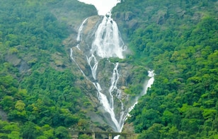 Dudhsagar waterfalls and spice plantation from Goa