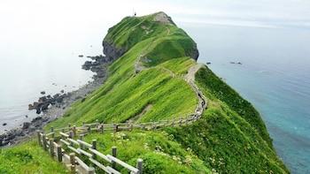 Summer Exclusive: Hokkaido Otaru & Shakotan Tour