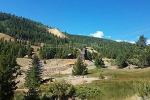 Colorado Gold Rush Mountain and Mine Tour