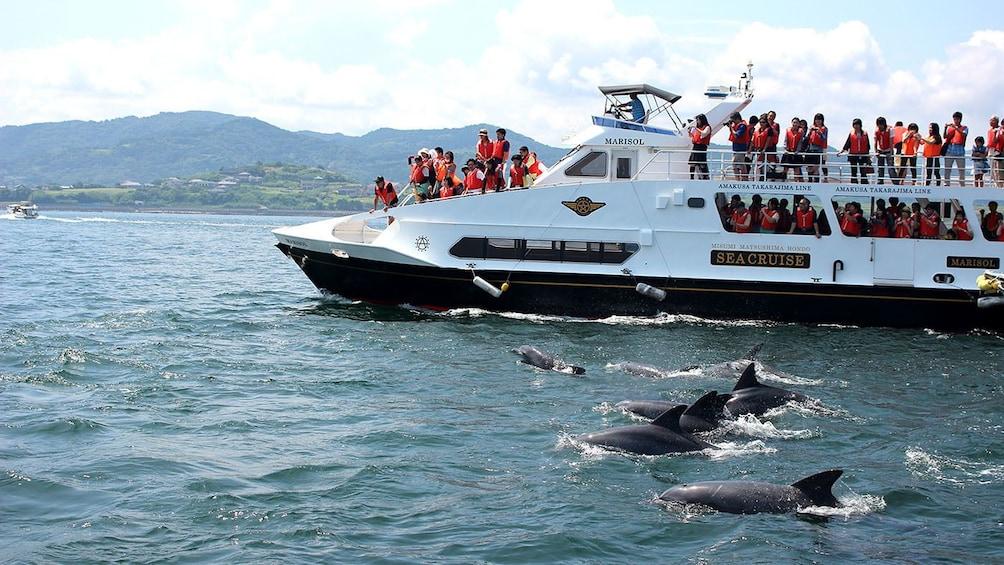 Show item 1 of 4. Kumamoto Amakusa Dolphin Watching (Bus Ticket Included)