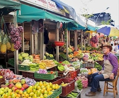 Half-Day Medellin Local Fruits and Market Places Tour