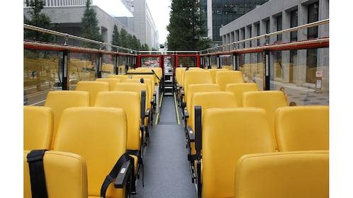 Tokyo Sky Hop-on & Hop-off Bus Ticket