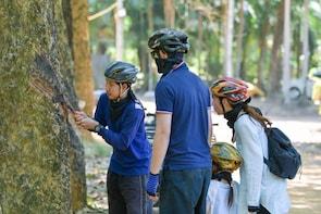 Phuket Quads & ATV Mangrove Jungle Tour