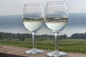 Seneca Lake Wine Tasting & Tour