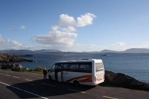 Ring of Kerry Tour from Killarney including Killarney National Park