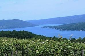 Keuka Lake Winery Tour