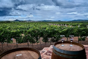 Mexico: Private wine & cheese tour to Queretaro